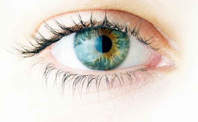 Terapia genica: una cura contro le degenerazioni della retina