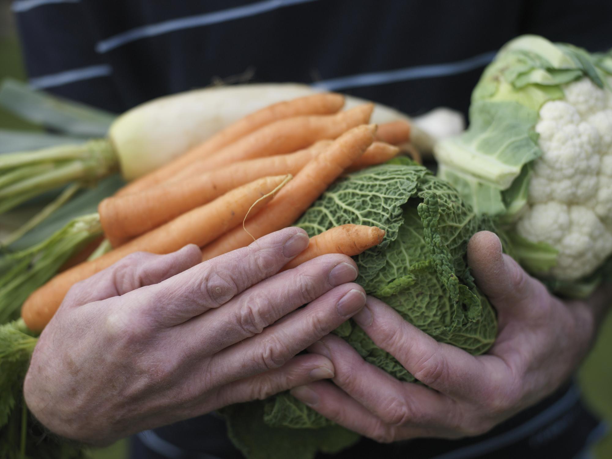 Sindrome metabolica e disturbi alla prostata: curarli con l'alimentazione