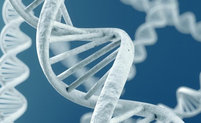 Banca del DNA: un nuovo sistema per la lotta al crimine