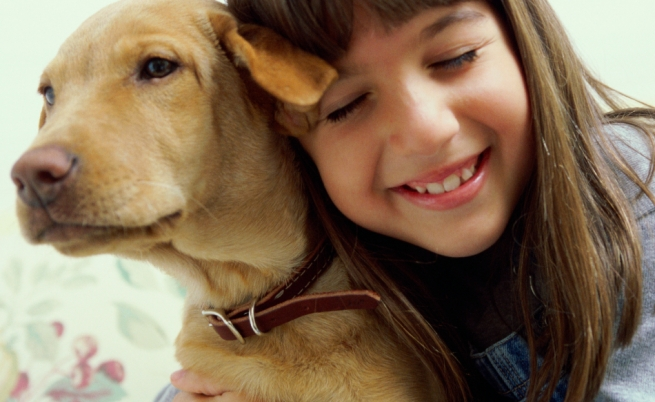 Cosa fare o non fare se un cane mostra aggressività