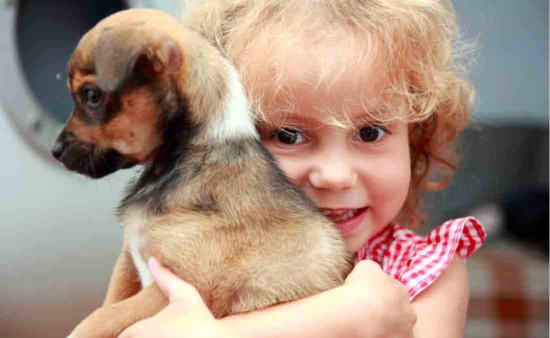 Un cane in casa per combattere asma e allergie
