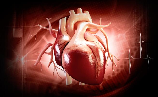 Poche regole per ridurre il rischio di malattie cardiache