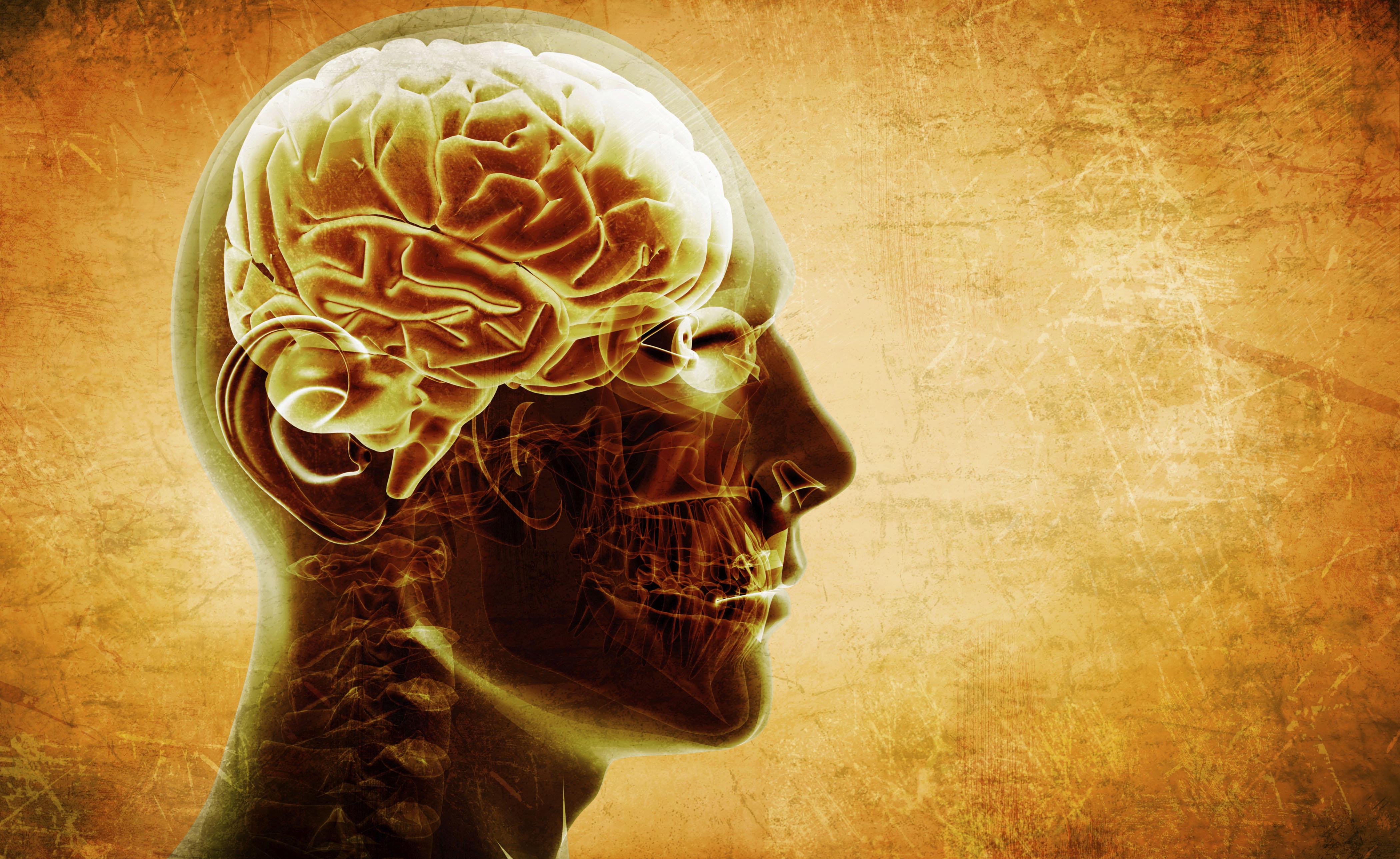 Denti e ossa nel cervello di una ragazza