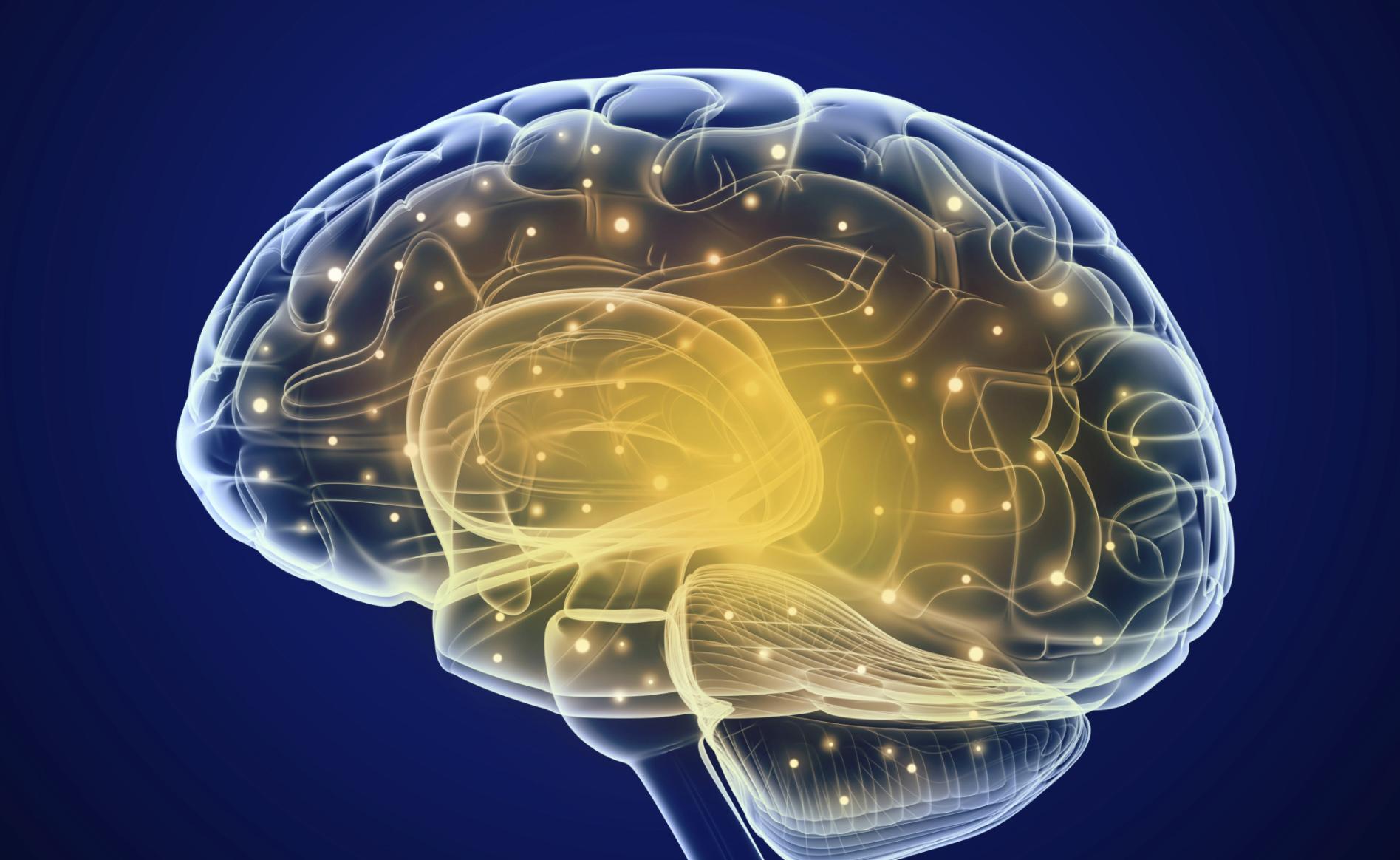 Manipolare il cervello durante il sonno per sradicare razzismo e sessismo