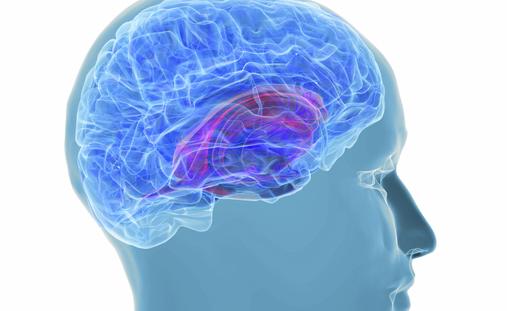 Avrò o no il morbo di Alzheimer?