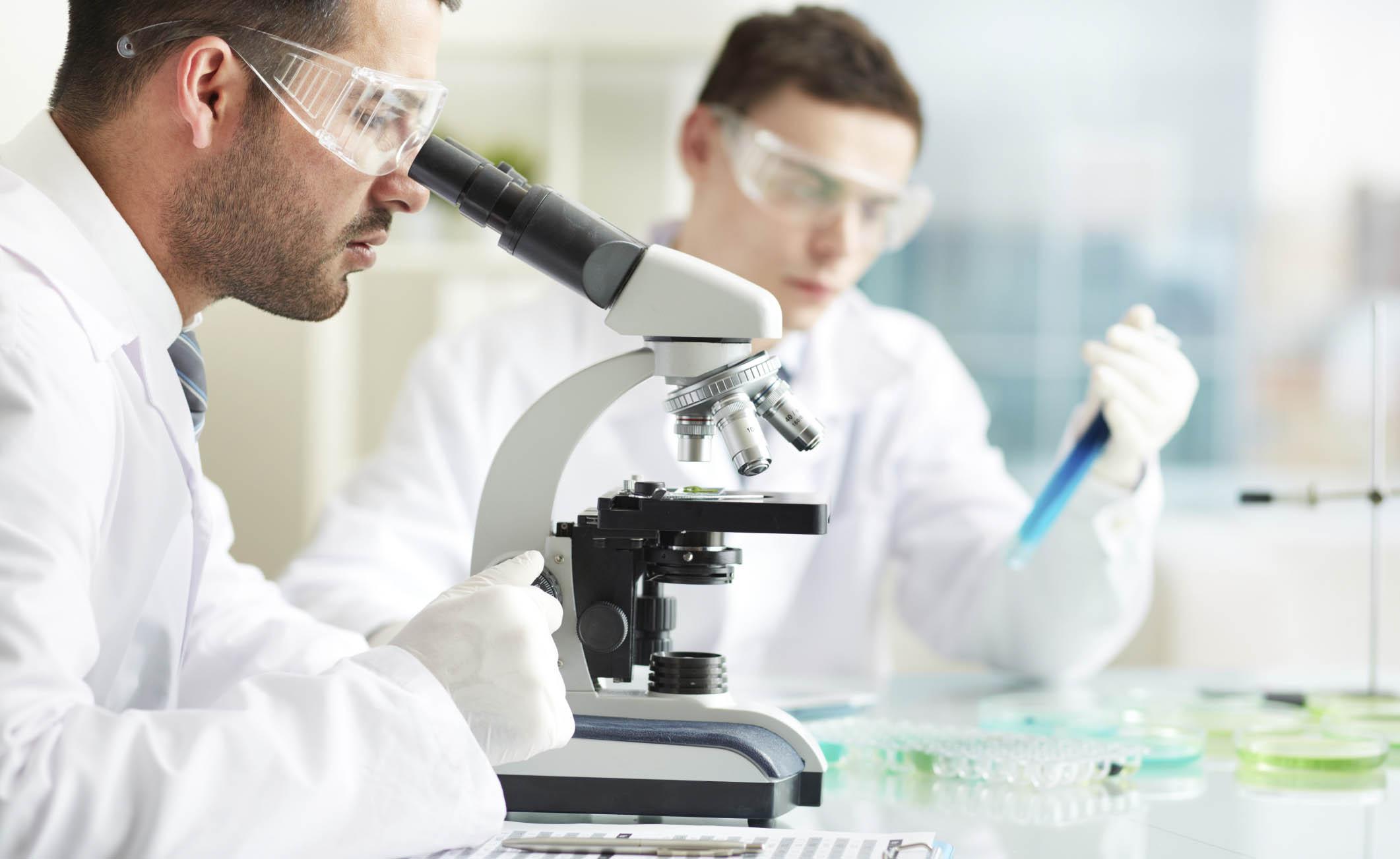Carcinoma prostatico: scoperta la molecola che blocca il sistema immunitario