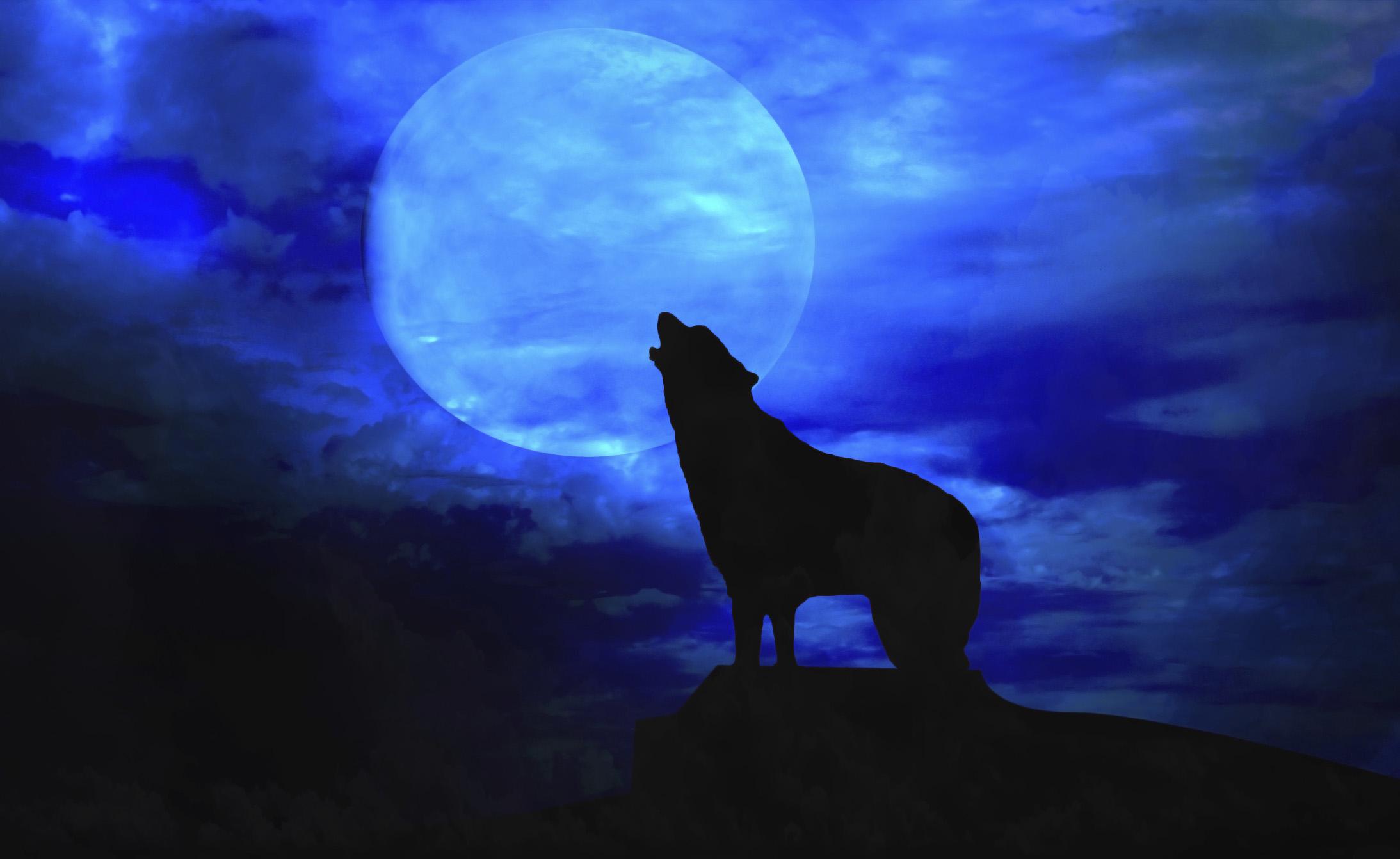 Il lupo mannaro esiste davvero?