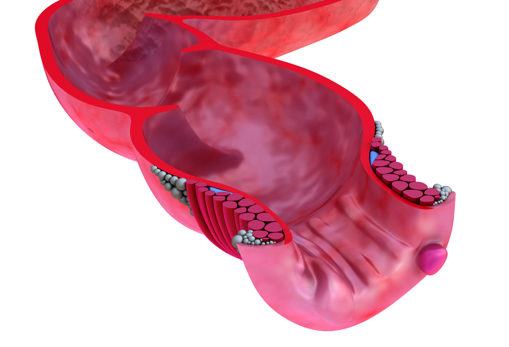 emorroidi vs dolore alla prostata
