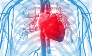 Malattie cardiache: dieta per prevenirle