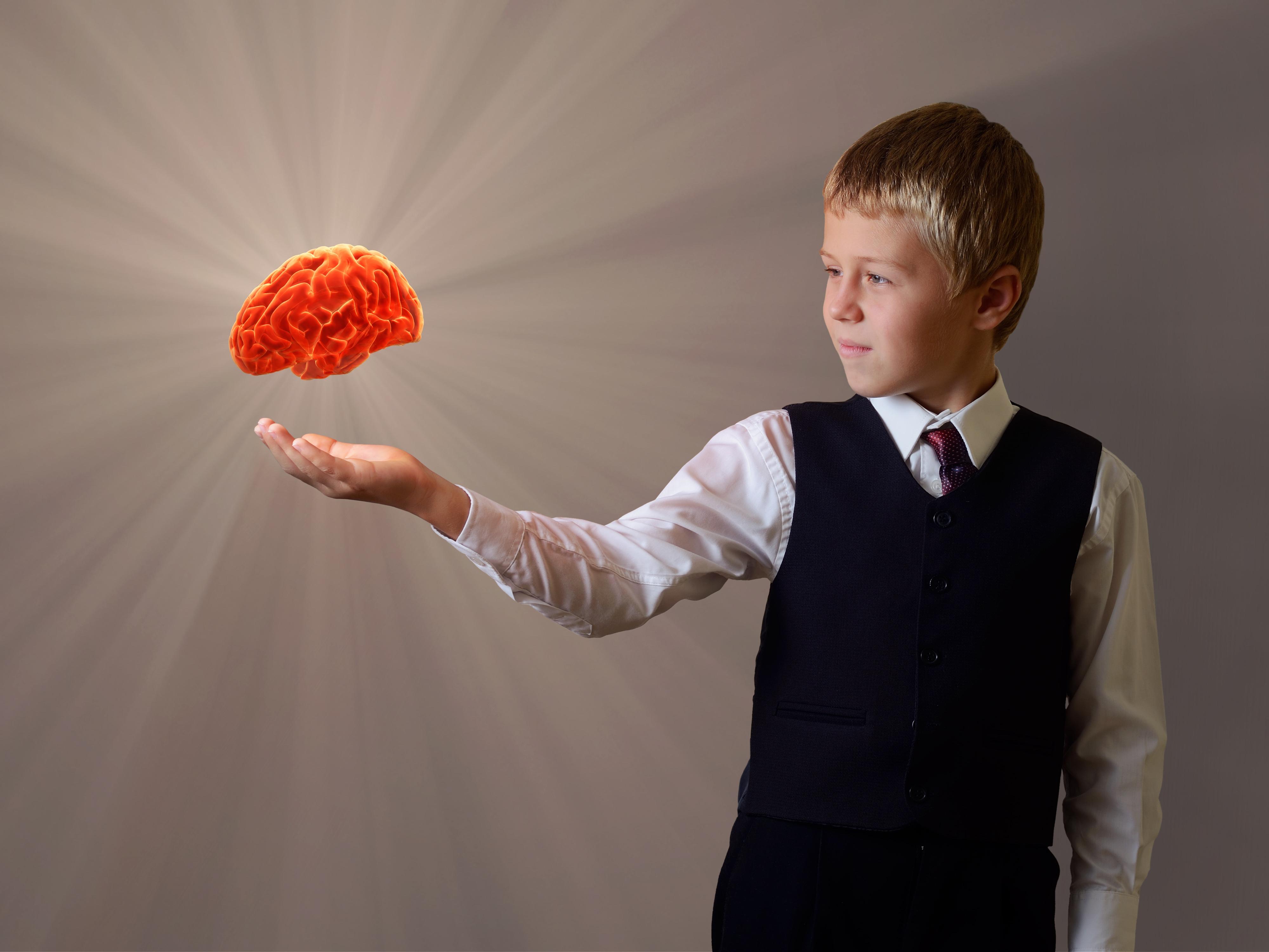Il cervello sociale nel Disturbo dello Spettro Autistico