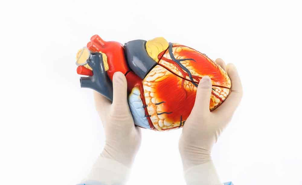 Fibrillazione atriale: come curarla con la cardiochirurgia