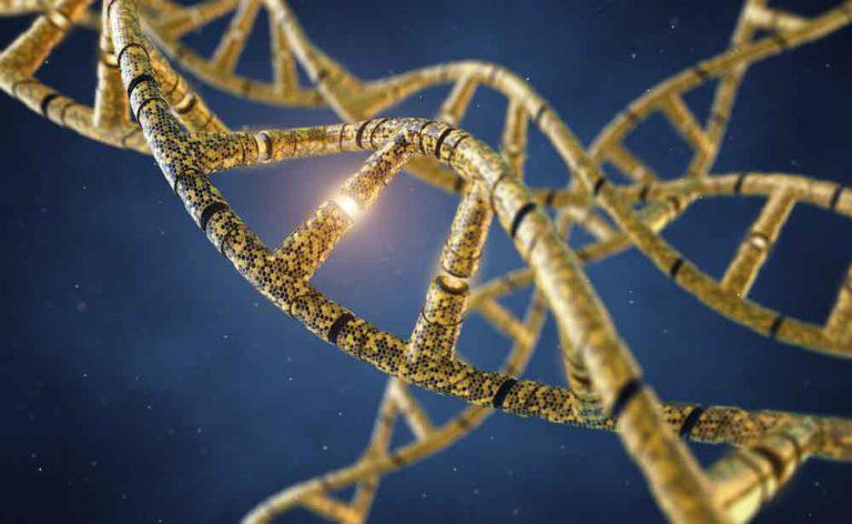 Le mutazioni genetiche più curiose