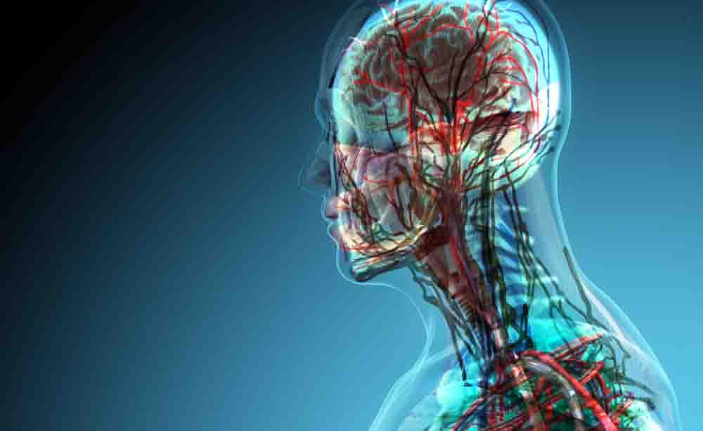 Le malattie autoimmuni potrebbero essere legate a un aumento del rischio di demenza