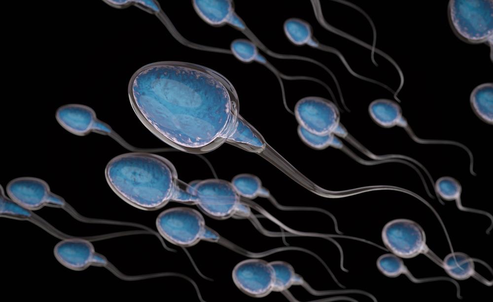 Una App ci svela la salute degli spermatozoi