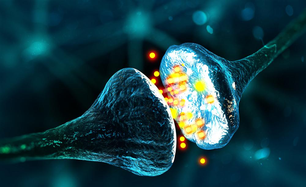 Creata in laboratorio una sinapsi artificiale: l'intelligenza delle macchine