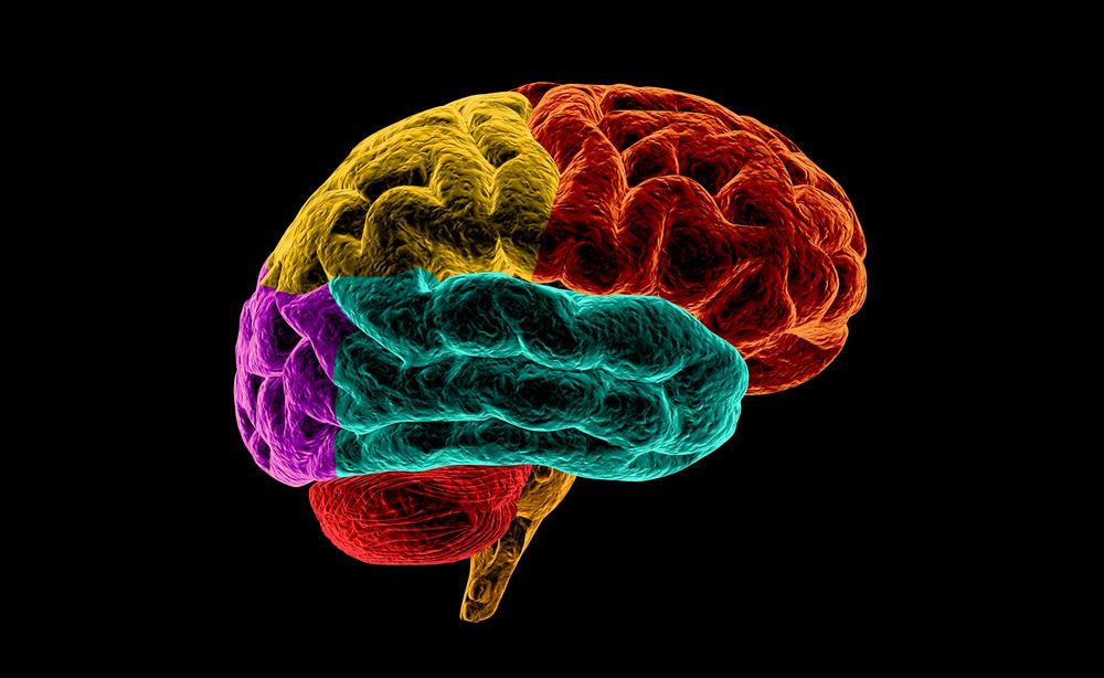 Morbo di Parkinson: più vicini alla cura?