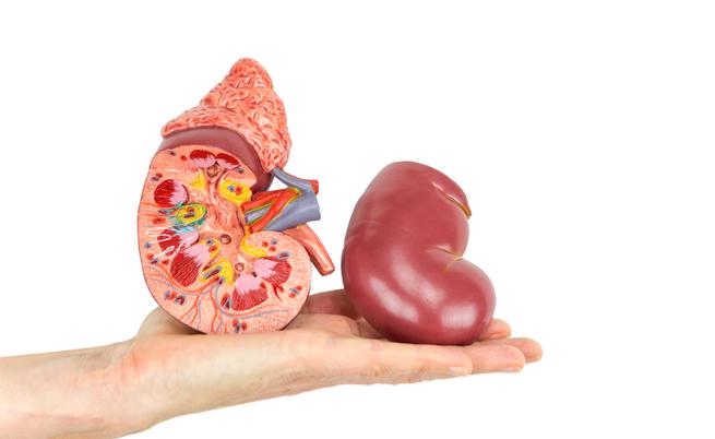 dieta per pazienti con insufficienza renale acuta