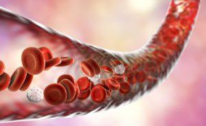 Gruppi sanguigni: le caratteristiche