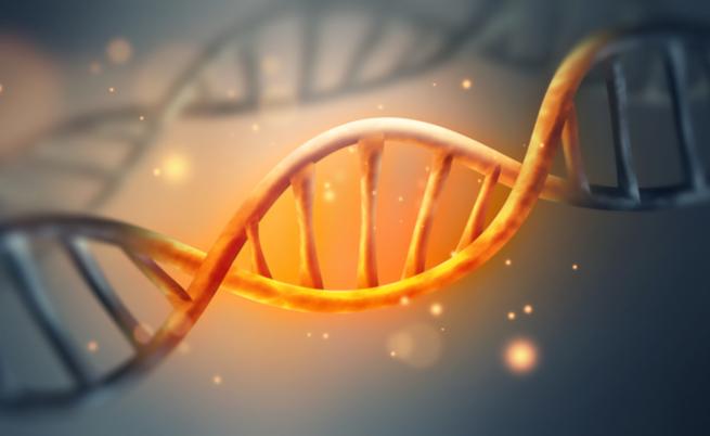Quello che non immagini sul DNA: ecco 10 curiosità!