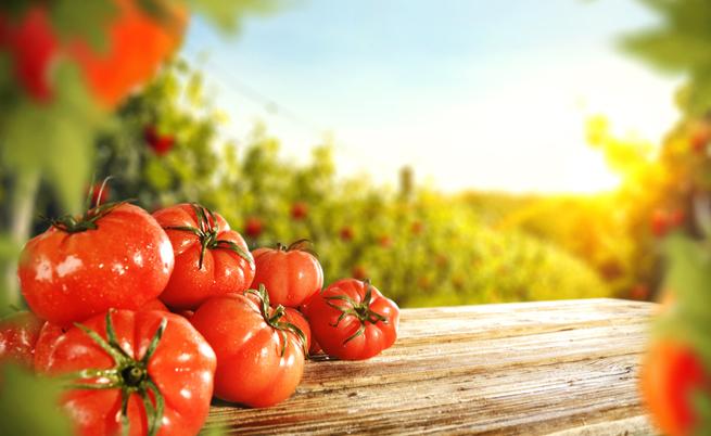 Diabete: curariamolo con faglioli, broccoli e pomodori!