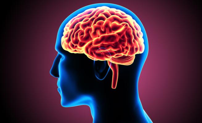 Qual è il legame tra Alzheimer, Parkinson e morbo di Huntington?