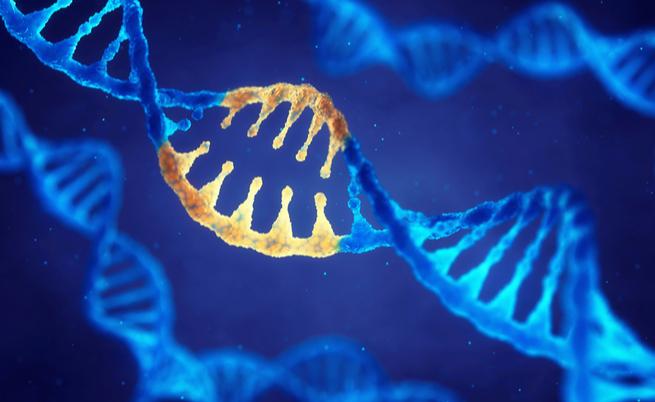 L'autismo è ereditario: la causa è nei geni