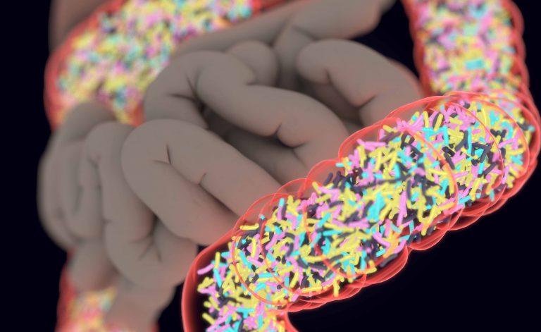 Sì, i batteri dell'intestino influenzano (anche) il nostro umore