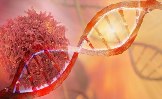 Tumori: bastano 20 sigarette al giorno per causare una mutazione genetica