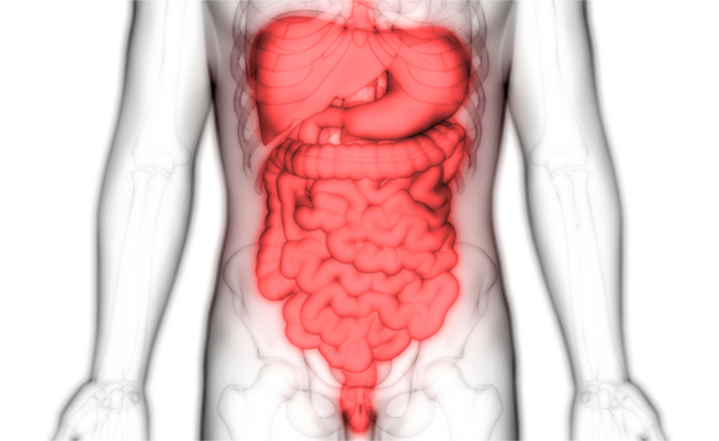 Diarrea, la parola all'esperto: dalla ricerca delle cause all'alimentazione corretta