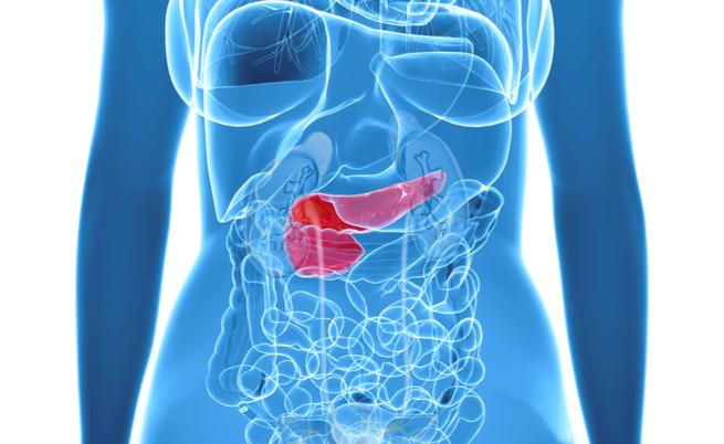 Tumore al pancreas: un test per la diagnosi precoce
