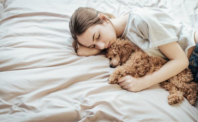 Dormire con il cane disturba il sonno: vero o falso?