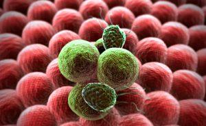Ecco la nuova cura cancro che si serve dell'immunoterapia