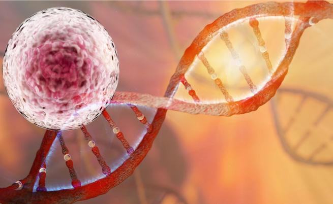 Tumori ereditari: ecco quali sono e come anticipare la diagnosi