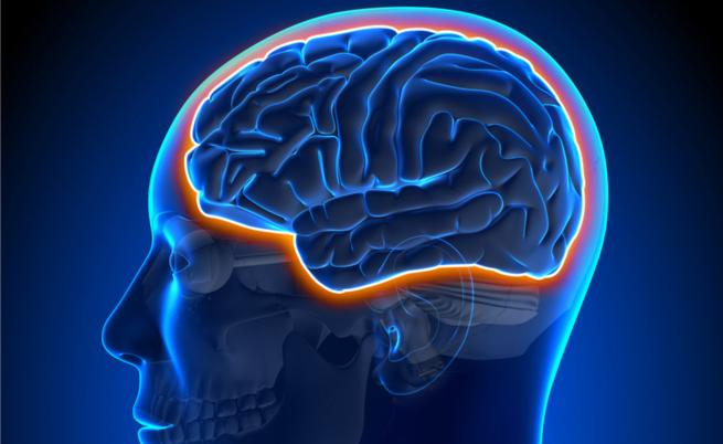 Prevenire la demenza senile: quell'ingrediente segreto (che a volte spaventa)