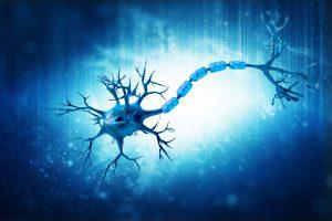 Sla e biotestamento: la prima applicazione in Italia