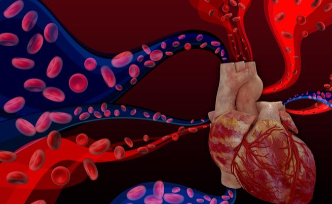 "Cardiopatie congenite, ecco come ""scoprirle"": la parola al cardiologo"