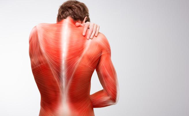Dolore acuto e rigidità muscolare: quando si tratta di polimialgia reumatica?