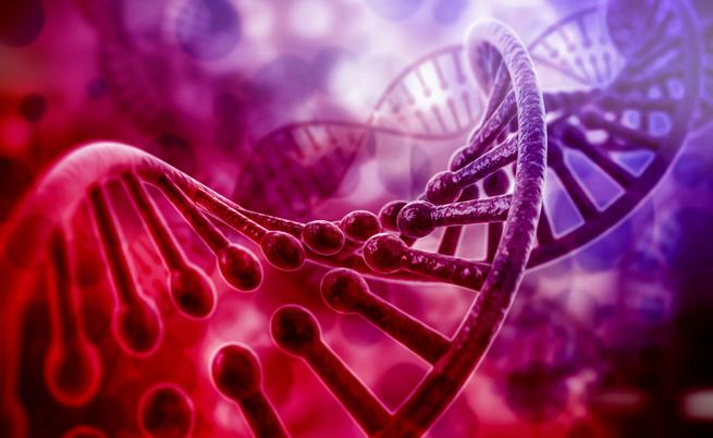 Il nostro patrimonio genetico sarà a disposizione di tutti?