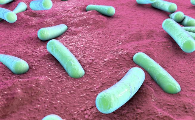 I batteri che causano malattie autoimmuni: dall'artrite al morbo di Crohn