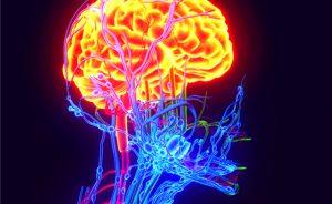 morbo di alzheimer: le cause della perdita di memoria