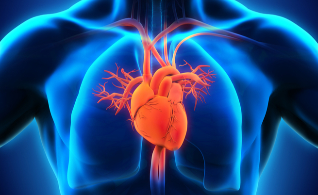10 cibi che fanno (molto) bene al cuore