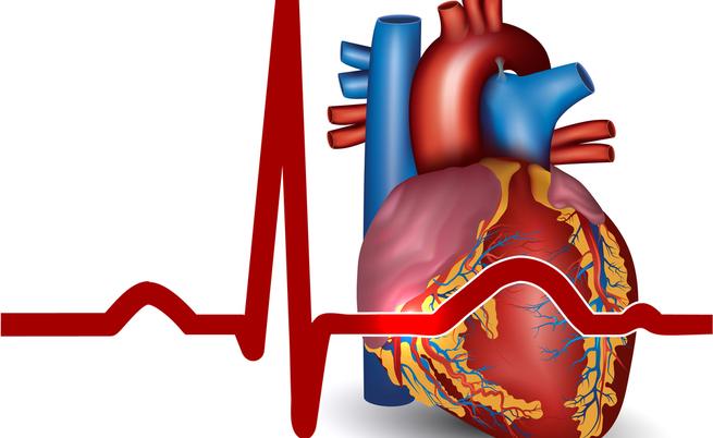 Giornata contro l'Ipertensione Arteriosa: il 18 maggio giornata di sensibilizzazione