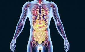 squlibri ormonali: sintomi, cause e cure