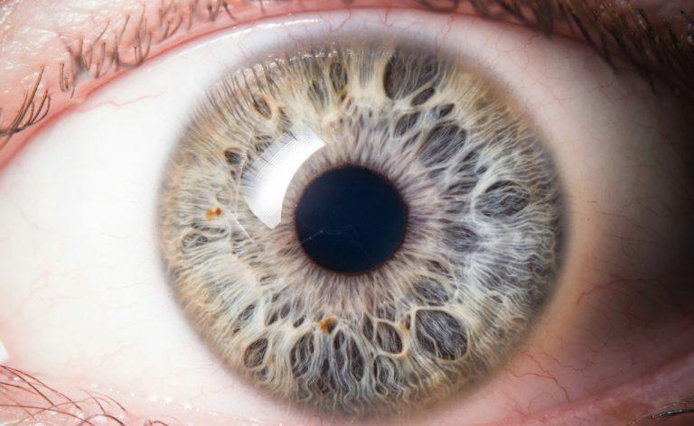 Autismo e diagnosi precoce: un test sulle pupille può predirlo?