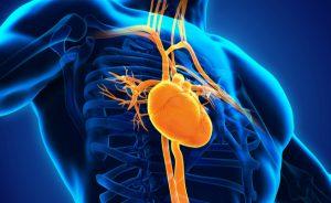 sindrome del cuore spezzato: i sintomi