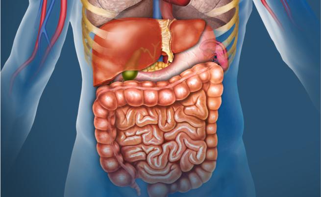10 alimenti ricchi di zinco (per evitare problemi intestinali, ormonali e non solo)