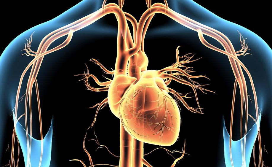 Cosa sai sull'angina pectoris?