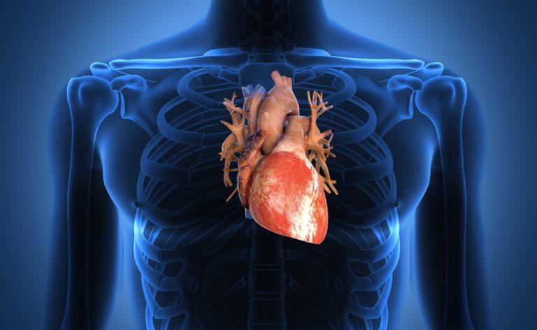 Avere un cuore sano dopo i 40 anni? Sì, ecco come