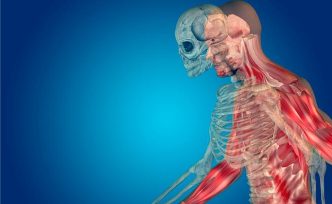 10 cibi ricchi di calcio (per la salute di ossa, muscoli, cuore e non solo)