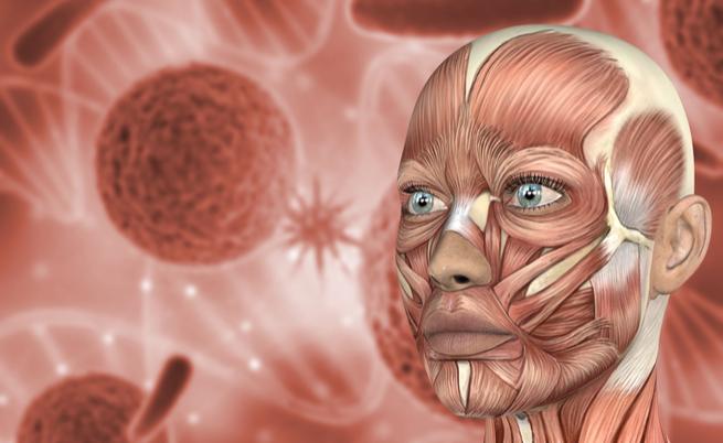 Lupus, artrite e psoriasi: quando usare i farmaci immunosoppressori
